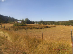Photo of 473 ORCHARD LN, Roseburg, OR 97471 (MLS # 20015675)