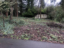 Photo of 02 SW 43RD AVE, Portland, OR 97219 (MLS # 20049366)
