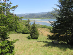 Photo of N Bank Rogue RD, Gold Beach, OR 97444 (MLS # 20088116)