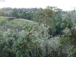 Photo of 0 OLD MELROSE RD , Unit 3, Roseburg, OR 97471 (MLS # 20128412)