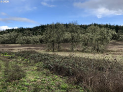 Photo of 620 SW STEARNS LN, Oakland, OR 97462 (MLS # 20208668)