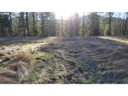 Photo of 22542 E BRIGHTWATER WAY, Rhododendron, OR 97049 (MLS # 20274243)