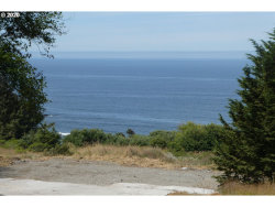 Photo of 36710 TINSLEY LN, Gold Beach, OR 97444 (MLS # 20307879)