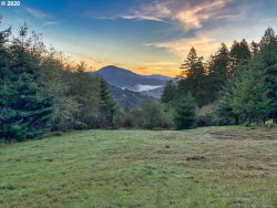 Photo of Sunforest CT , Unit 12, Brookings, OR 97415 (MLS # 20355461)