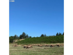 Photo of Wind and Sea LOOP , Unit 26, Warrenton, OR 97146 (MLS # 20404213)