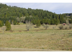 Photo of 0 Bugle LOOP , Unit 44, Oakridge, OR 97463 (MLS # 20475499)