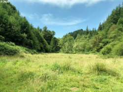 Photo of 7421 North Fork Siuslaw RD, Florence, OR 97439 (MLS # 20490582)