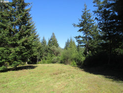 Photo of 89308 Sunny Loop LN, Bandon, OR 97411 (MLS # 20527143)