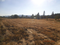 Photo of 485 ORCHARD LN, Roseburg, OR 97471 (MLS # 20560221)