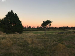 Photo of Bing LN , Unit 1, Warrenton, OR 97146 (MLS # 20593056)