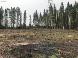 Photo of 17438 STATE HIGHWAY 42 , Unit 3, Camas Valley, OR 97416 (MLS # 20594684)
