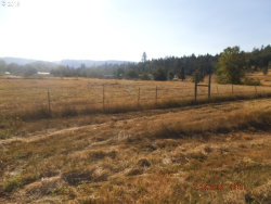 Photo of 479 ORCHARD LN, Roseburg, OR 97471 (MLS # 20598217)