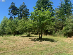 Photo of twelfth, Port Orford, OR 97465 (MLS # 20614267)