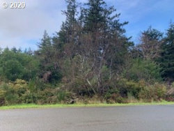 Photo of Arizona ST, Port Orford, OR 97465 (MLS # 20667953)