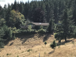 Photo of 38762 S SAWTELL RD, Molalla, OR 97038 (MLS # 17046527)
