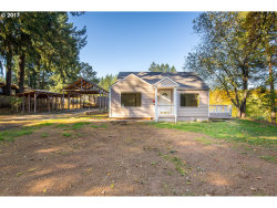 Photo of 417 LEWIS ST, Falls City, OR 97344 (MLS # 17425964)
