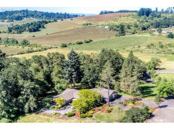 Photo of 14021 NE HIGHWAY 240, Newberg, OR 97132 (MLS # 17474517)