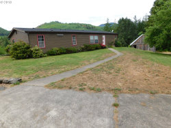 Photo of 41308 SOUTH POWERS RD, Powers, OR 97466 (MLS # 17672353)