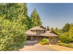 Photo of 41717 NW CHILTON DR, Woodland, WA 98674 (MLS # 18019122)