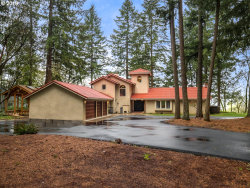 Photo of 31030 SW RIVER LANE RD, West Linn, OR 97068 (MLS # 18051144)