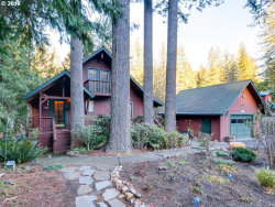 Photo of 22382 NE STEELHEAD LN, Yacolt, WA 98675 (MLS # 18168237)