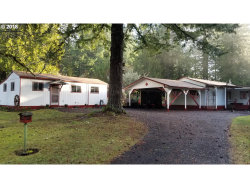Photo of 28716 CHAPMAN RD, Scappoose, OR 97056 (MLS # 18223965)