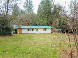 Photo of 24106 NE 419TH ST, Amboy, WA 98601 (MLS # 18381968)