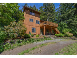 Photo of 20105 SE BORGES RD, Damascus, OR 97089 (MLS # 18396733)