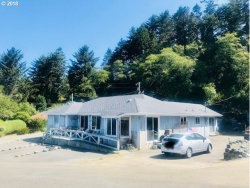 Photo of 29193 KERBER DR, Gold Beach, OR 97444 (MLS # 18502754)