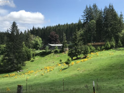 Photo of 38762 S SAWTELL RD, Molalla, OR 97038 (MLS # 18624438)