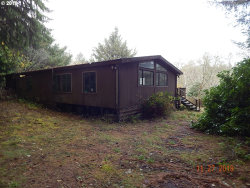 Photo of 42118 OLD MILL RD, Port Orford, OR 97465 (MLS # 18665666)