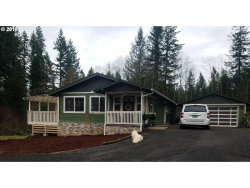 Photo of 21101 NE 267TH ST, Battle Ground, WA 98604 (MLS # 18694255)