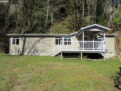 Photo of 765 Deans Creek RD, Reedsport, OR 97467 (MLS # 19048853)