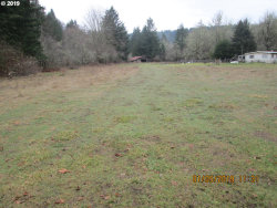 Photo of 28697 SCAPPOOSE VERNONIA HWY, Scappoose, OR 97056 (MLS # 19053725)
