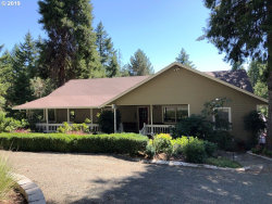 Photo of 324 WILDFLOWER LN, Oakland, OR 97462 (MLS # 19064039)