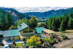 Photo of 1065 COUGAR CREEK RD, Oakland, OR 97462 (MLS # 19118499)