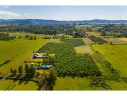 Photo of 83278 BRADFORD RD, Creswell, OR 97426 (MLS # 19121369)