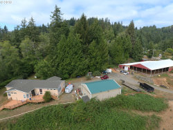 Photo of 95831 STOCK SLOUGH LN, Coos Bay, OR 97420 (MLS # 19122845)