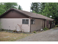 Photo of 336 S FOLSOM CT, Coquille, OR 97423 (MLS # 19124746)