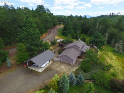 Photo of 1665 CHURCHILL DR, Oakland, OR 97462 (MLS # 19124931)