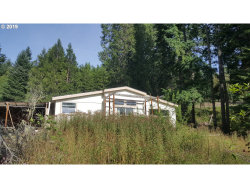 Photo of 795 SPOONER RIDGE LN, Oakland, OR 97462 (MLS # 19252458)