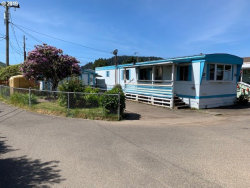 Photo of 177 RIGGS HILL LN, Winchester Bay, OR 97467 (MLS # 19431774)