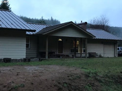 Photo of 54123 LAMPA CRK RD, Coquille, OR 97423 (MLS # 19434865)