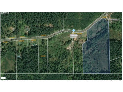 Photo of 24396 HIGH PASS RD, Junction City, OR 97448 (MLS # 19486181)