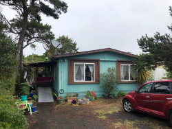 Photo of 4585 FOULWEATHER ST, Florence, OR 97439 (MLS # 19493185)