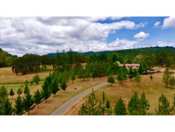 Photo of 1065 ROLLING RIDGE RD, Oakland, OR 97462 (MLS # 19586742)