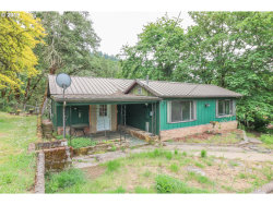 Photo of 818 UNION GAP LOOP RD, Oakland, OR 97462 (MLS # 19633181)
