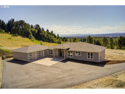 Photo of 38703 NW PACIFIC HWY, Woodland, WA 98674 (MLS # 19671420)