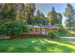 Photo of 7610 LEWIS RIVER RD, Ariel, WA 98603 (MLS # 20035664)