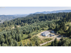 Photo of 1995 PLEASANT VIEW DR, Cottage Grove, OR 97424 (MLS # 20140740)